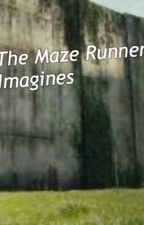 The Maze Runner ~ imagines by intoodeep_writing