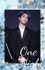 One Night (Han Jisung x-reader) by MissDevoured