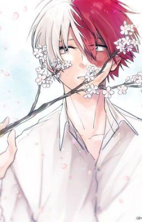 ♡His Sweet Sakura Blossom ♡Shoto todoroki x reader ♡ - Chapter 1