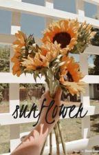 Sunflower by starynightae