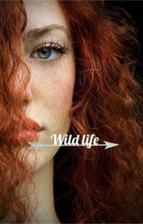 Wild life by insertWittyPunHere