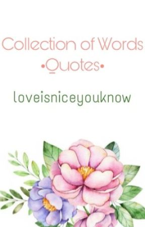 Collection of Words •Quotes• by loveisniceyouknow