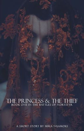 The Princess & the Thief by odemira