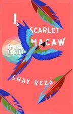 I, Scarlet Macaw by ShayReza