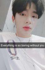 Stray Kids || Snapchat (English) by Kim_Suyu