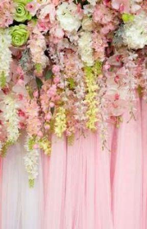 Rainbow_Freaky and I's wedding by _Star-Sailor_
