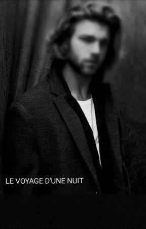 LE VOYAGE D'UNE NUIT by amsab305