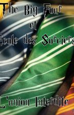 The Big Four A L'école Des Sorciers - L'union Interdite- by Merida-Freya