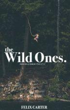 The Wild Ones by FelixIsWriting