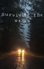 surviving the storm by grungeh0ran