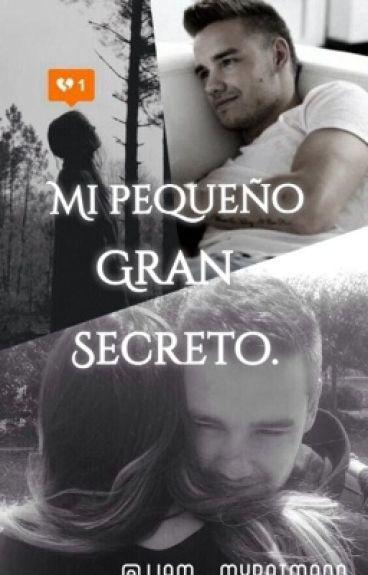 Mi pequeño gran secreto ( Liam Payne y tú )