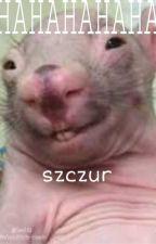 HAHAHAHAHA szczur. by teletubisio-komin