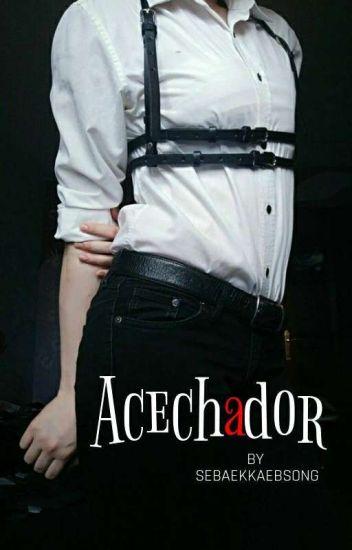 Acechador ── JinTae OS