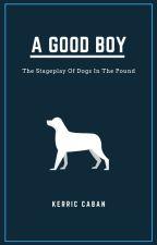 A Good Boy: Scene 1 by KerricCaban