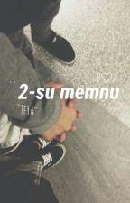 ♡'2-su memnu~♡ by zeyareal