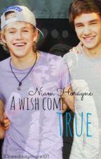 A wish come true (Niam) (boyxboy) AU by 1Dneedisaymore101