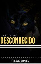 Gato de Rua - Desconhecido by EduardaChaves19