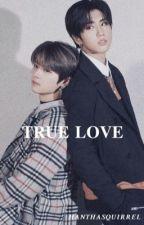 TRUE LOVE || minsung by a_lemarti