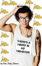 There's a Harry in my Hamster! by Real_Ninja_Unicorn