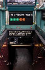 The Brooklyn Project (Lams) by lafayeet