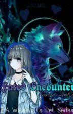 Fated Encounter: A Werewolf's Pet by KomoriYuki