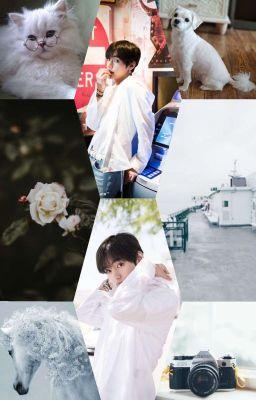 Đọc truyện •Fanfic•TaeHyung• [Nếu như tôi nói tôi yêu em]