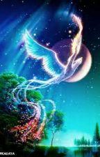 The Phoenix's Tears by miyauxiong