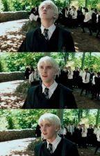 Whispers   (Draco Malfoy x reader) by lyssfromjupiter