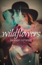 Wildflowers by JacksonTerrance