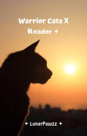 Warrior Cats X Reader | ONE SHOTS by LunarPawzz
