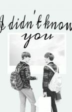 I didn't know you~  || HunHan_Oneshot || by Park_Soo-Min