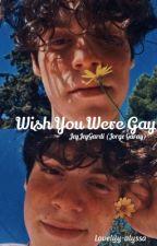 Wish You Were Gay//Jeyjeygardi (Jorge Garay) by lovelyy-alyssa
