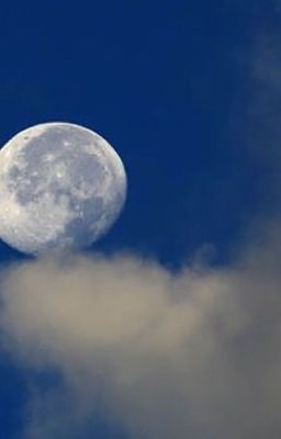 The moon represents my heart  -  月亮代表我的心 。