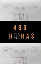 480 horas by VMAM24