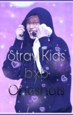 Stray Kids Ship Oneshots by CarrotSticks66