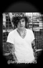The bad boy, Harry Styles by larry_shipper25