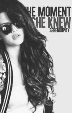 The Moment I Knew (Harry Styles Love Story) by serendiipity