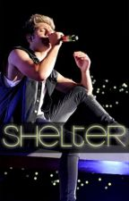 shelter » niall horan {próximamente} by harrymakesloustrong