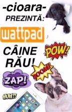 Wattpad, Câine Rău! by -Cioara-