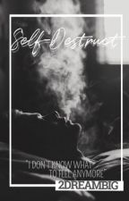 SelfDestruct by 2DREAMBIG
