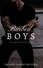 Barbed Boys by afewmorewords