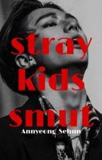 stray kids smut by Annyeong_Sehun