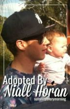 Adopted by Niall Horan by sunshineeverymorning