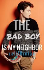 The Bad Boy is my Neighbor by calif0rniaa