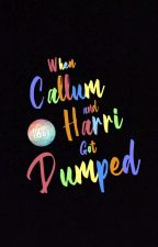 When Callum and Harri Got Dumped (bxb) by cupofli