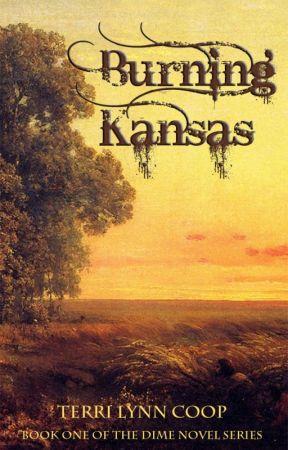 Burning Kansas by TerriCoop