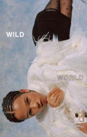 wild world ━━ skins by simpIeromance