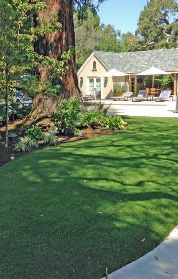 Pro Lawn Care - Prolawn Care - Wattpad