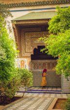 Badis by AmineNahid