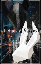 Lebres e Ratos by lilucker